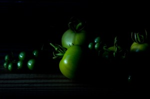 just green tomatoes?